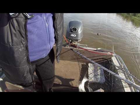 выйти на рыбалку на банку