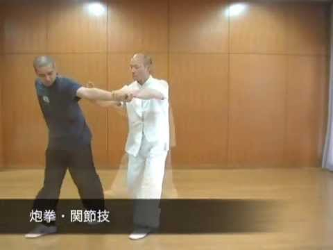 形意拳・五行拳・打法拿法集 ~ Xingyiquan Fight ~ by 旺龍堂 Image 1