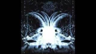 Watch Darkthrone birth Of Evil Virgin Sin video