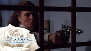 Download Lisa castiga a Néstor por la desaparición de su hija | Mi dulce compañía | La Rosa de Guadalupe 3Gp Mp4