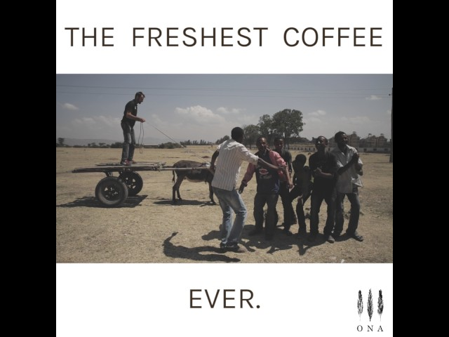 The freshest coffee ever!