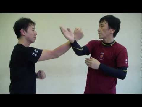 Jun Fan / Jeet Kune Do Trapping Skills