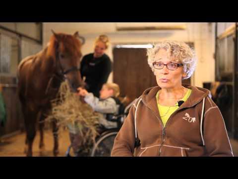 Videolla kerrotaan perustietoa ratsastusterapiasta ja sosiaalipedagogistesta hevostoiminnasta. Lisäksi videolla esitellään vihtiläisen fysio- ja ratsatusterp... Author : Hippolis ry
