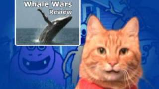 Whale Wars Review: Animal Planet