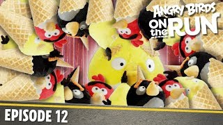 Angry Birds on The Run | Brain Freeze - S1 Ep12