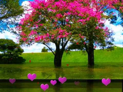 sonu nigam song tall pa jab ye zindagaani challi romantic poetry...