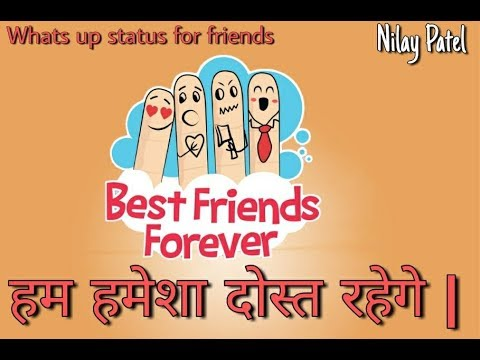 Whats Up Status | हम हमेशा दोस्त रहेगे | Hum hamesha dost rahenge | by nilaypatel