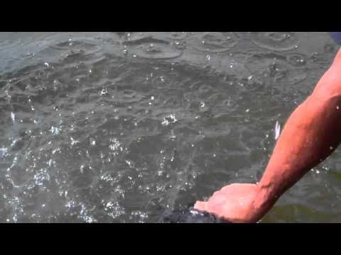 Shooting the Glock 19 Underwater - TheFireArmGuy