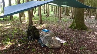 SOLO TARP CAMP, FIRST USE OF  BUSHBOX XL AND SPRING DAWN CHORUS