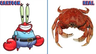 SpongeBob SquarePants Characters In Real Life!