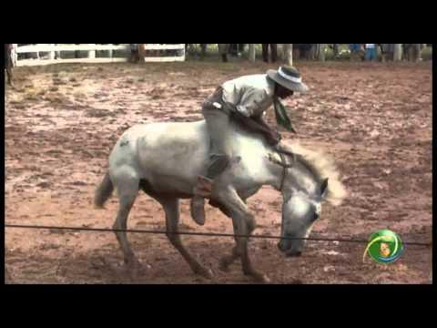 15º Rodeio Crioulo Nacional de Campeões » Gineteada » 29.01 (sábado)