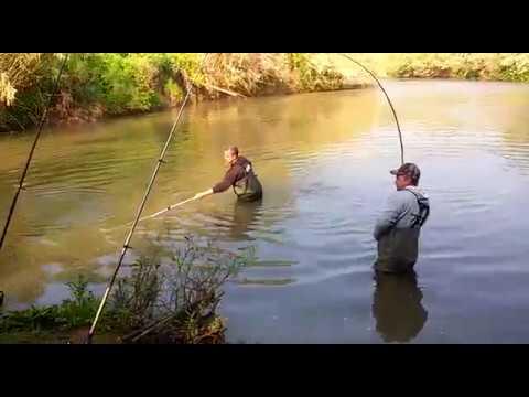 ночная рыбалка на усача