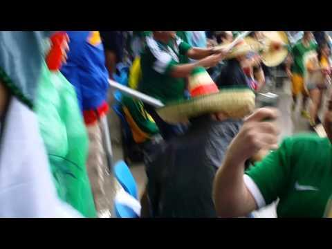 Gol de Mexico vs Camerun Brasil 2014