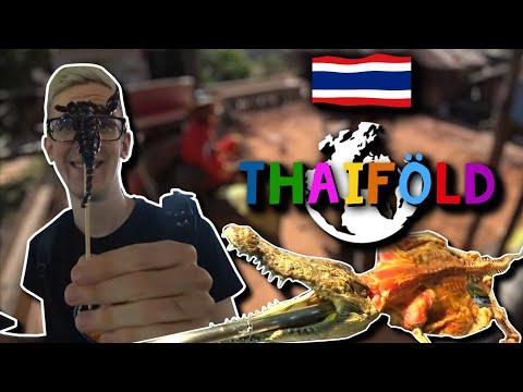Skorpióevés? Ping pong show? Stream egy elefánt hátáról? - Thaiföld #1