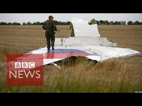 MH17 hit by 'numerous objects' says report