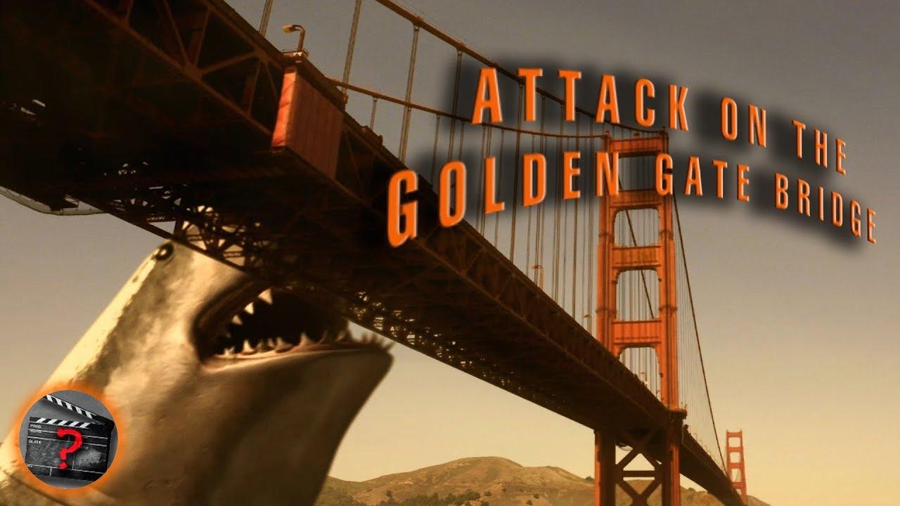Golden Gate Sharks Attack on The Golden Gate
