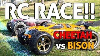RC Car SPEED RACE!! Cheetah vs Bison
