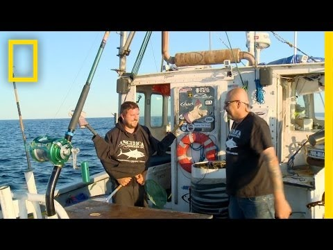 Fish Hard, Play Hard | Wicked Tuna
