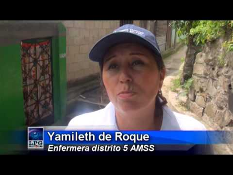 Alcaldia de San Salvador realizó campaña de fumigación