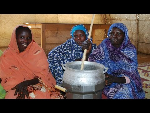 The Darfur Stoves Project