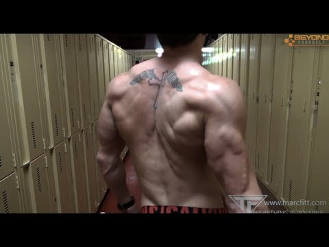 The ULITIMATE BACK Workout -marcfitt.com