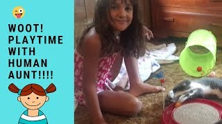 Funny Cats Playtime With Favorite Human Kid Aunt   Funny Cats