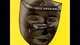 Watch Lambchop The Militant video