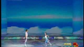 Dance by Ma Li and Zhai Xiaowei (2009 CCTV)