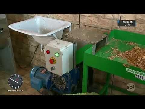 DF: Escola ganha máquina que transforma lixo em compostagem   SBT Notícias (18/08/17)