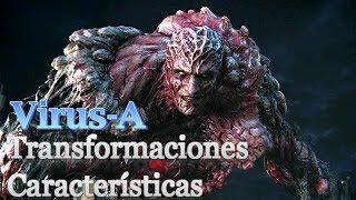 El Virus-A Sus Transformaciones y características