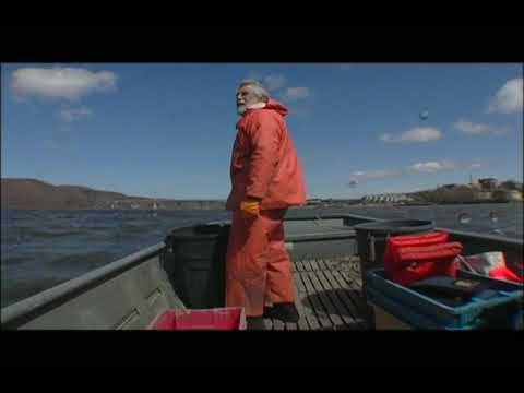 Hudson River Shorts #8 - Shad Fishing