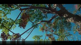 KANIKA kapoor new songs 2017 temple