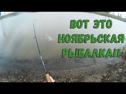 ловля окуня на небольших озерах