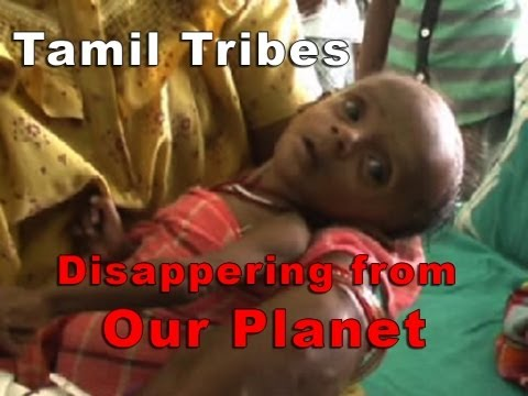 Disappearing form our planet .. The Tamil Ancieant tribes [RED PIX]
