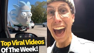 Top 50 Best Viral Videos Of The Month - November 2019 (Try not to laugh)