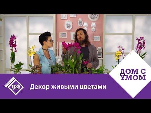 Как украсить праздничный стол в саду – идеи для цветов