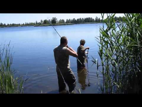 рыбалка на озере догадка