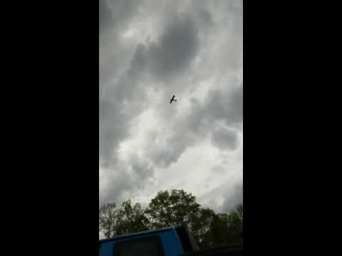 Crazy plane crash Cairo NY!!