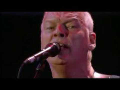 Pink Floyd - Comfortably Numb (Live 8) Music Videos