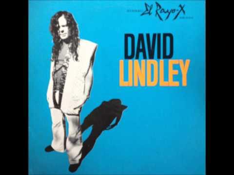 David Lindley - Quarter Of A Man