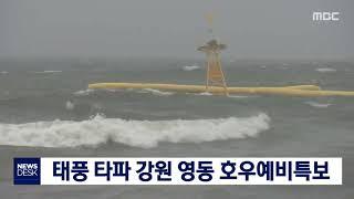 태풍 타파 강원 영동 호우예비특보