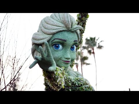 Anna and Elsa FROZEN Topiary First Look at Epcot Flower and Garden Festival 2015 - Walt Disney World