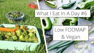 What I Eat In A Day #6 - Low FODMAP + Vegan