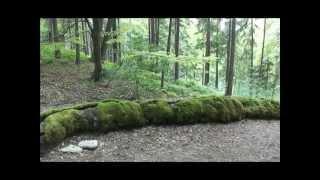 Naturwunder Der Oberpfalz: Die Schöne Oberpfälzer Schwester Der Steinernen Rinne Von Weißenburg