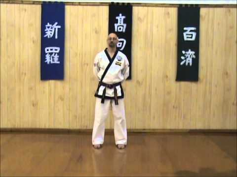 Tang Soo Do - Single Step Drill - Intro & Sequence 1 Image 1