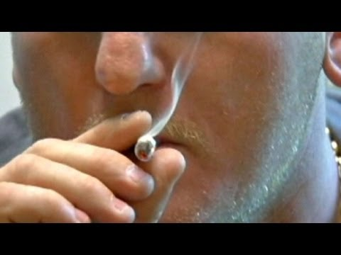 'This Week': Marijuana Legalization