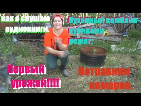 VLOG-солянка (травлю комаров, кух.комбайн и проста ля-ля три рубля!!!