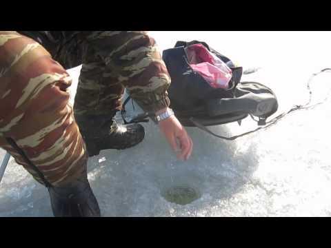 видео рыбалка с борисычем
