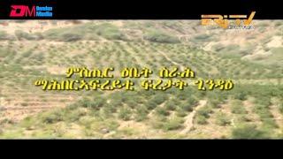 ERi-TV, Eritrea - ካብ ዞባታት፡ ምስጢር ዕቤት ስራሕ ማሕበር ኣፍረይቲ ፍረታት ጊንዳዕ