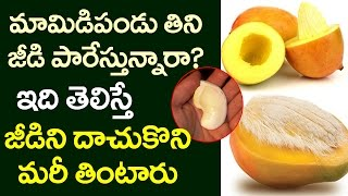 AMAZING Benefits of Mango Seed That You Never Know! | Health Tips in Telugu | VTube Telugu